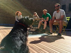 Photo of Making the most of the sunshine with Huxley on the @Clearleft deck.
