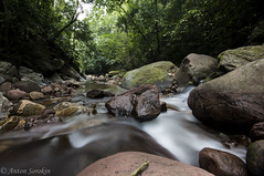 Another Riverscape (antonsrkn) Tags: cordillera escalera conservation wild nature stream water rocky boulders trees wideangle nikon nikkor southamerica peru outdoors outside outdoor green flowing