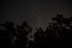 Lightime (conitsiotis) Tags: astrophotography nature gumtree