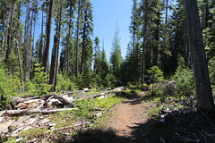 On the Cold Spring Trail (rozoneill) Tags: sky lake cold liza rock creek forest river spring elizabeth lakes fremont trail national wilderness rogue siskiyou winema trailhead isherwood notasha