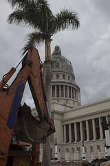 TG16_0090 (Julien Gil Vega) Tags: grafica cubana grabados xilografia