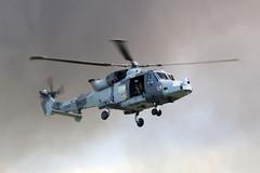 ZZ510 Yeovilton 02/07/16 (Andy Vass Aviation) Tags: yeovilton helicopter aac wildcat zz510