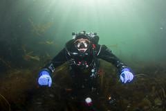 20160803-Eyemouth14 (Dacmirc) Tags: eyemouth diving ukdiving rebreather