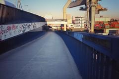 (giiova) Tags: container industriehafen industrie weg nature sonne sun sommer summer graffiti graffity deutschland germany badenwrttemberg rheinlandpfalz ludwigshafen mannheim bridge brcke