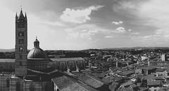 Sienna (Linkitu) Tags: sienne italy italia italie city white paysage panorama noir beautiful blackandwhite black bw toscane toscana tuscany sienna old vieux ville view grey gris