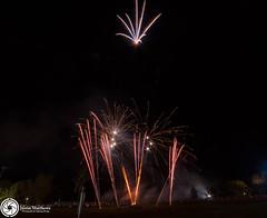 Beaudesert Show 2016 - Friday Night Fireworks-62.jpg (aussiecattlekid) Tags: skylighterfireworks skylighterfireworx beaudesert aerialshell cometcake cometshell oneshot multishot multishotcake pyro pyrotechnics fireworks bangboomcrackle