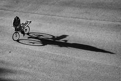 La sombra del ciclista es alargada (jfraile (OFF/ON slowly)) Tags: sombra bicicleta ciclista minimalismo street streetphotography jfraile javierfraile