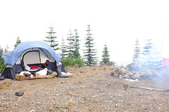 Dispersed Camping on Mt. Hood (NymphoBrainiac) Tags: camping light mountain oregon forest mthood