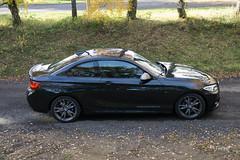 BMW M235i - 010.jpg
