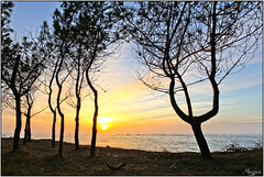 Arcachon (M@urice313) Tags: canon de soleil nice coucher le arcachon petit 5d3