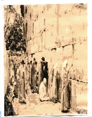 Vulnerable (WINTERBLOSSOM 59 (I am Winterblossom 58 too!) Tags: jewry hope israel worship christ jerusalem prayer jesus jewish judaism tradition messiah yeshua westernwall religiousart kotel moshiach jewishart