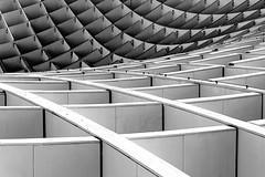 Roof (Rosetta Bonatti (RosLol)) Tags: roof blackandwhite bw abstract lines architecture sevilla spain geometry curves curve astratto architettura biancoenero spagna dettaglio siviglia linee dentali metropolparasol roslol