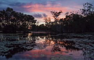 Cheeli Lagoon sunset