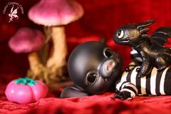 Final hours until the Pre-Order period is closed! ~ Hen Wen & Black BuBu ~ Exclusive Limited Edition (chartar_69) Tags: henwen charlesstephan pigbjd charlescreaturecabinet linmurasakidesign blackresin pigballjointeddoll blackbubu