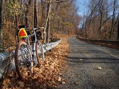 Quarry Road (reehren) Tags: road bicycle quarry gravel 650b rawland rsogn