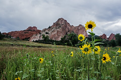 IMG_9471a (markbyzewski) Tags: colorado gardenofthegods ugly coloradosprings