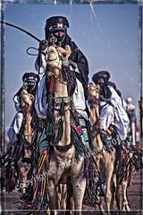 Journey (Alice Mutasa at PlacesandSeasons) Tags: africa music festival niger sand donkeys african traditional culture donkey camel heat nomad annual tradition camels nomads rains touareg musique ane afrique fulani harmattan nomade musicien musiciens agadez transhumance peul chameaux toureg bororo traditionel wodaabe ingall sundust peuls nigerien desertnomads curesalée journeyanimal traveldistancesaddledecorationchameauchameauxcamelusartio traveldistancesaddledecorationchameauchameauxcamelusartiodactylacamelidaechordatacamelusdromedariussaheltranquildromedarytranquilitymammaliamammalsacreddecorativemusiccelebration