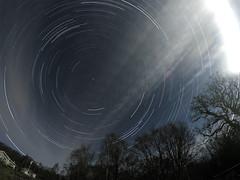 Startrail 2 (ErLj) Tags: trees night stars trails nightphoto startrails
