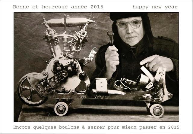 Bonne et heureuse année     2015    Happy new year