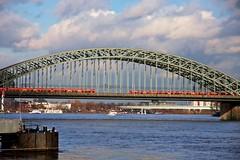 Keulen (Cologne) (Nolleos) Tags: bridge red train cologne brug rood trein koln keulen spoorbrug