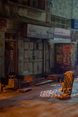Kolam (TAZMPictures) Tags: india night chennai pongal bhogi kolam rangoli triplicane