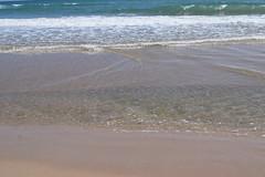 El Saler_155 (P. de Beira) Tags: naturaleza mar