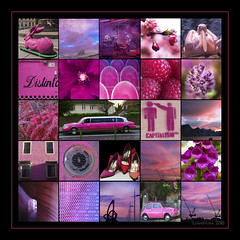 a composition in pink and purple- HSS! (lunaryuna) Tags: pink colour purple photomosaic squareformat tableau lunaryuna hss colourselection colourcomposition sliderssunday compositioninpinkandpurple