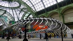 Monumenta 2016 - Empires by Huang Yong Ping - Grand Palais, Paris (Sokleine) Tags: paris france museum skeleton snake exhibition muse exposition empire serpent containers empires grandpalais squelette 75008 bicorne huangyongping monumenta2016