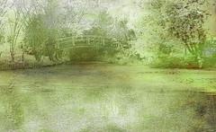 Monet's Bridge (alanrharris53) Tags: nottingham lake art water phone centre monet layers patchings