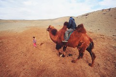 Our professional camel guide (The Gobi, Mongolia) #travel (wingilote) Tags: travel red canon asia desert mongolia backpacking tamron camels gobi 17mm
