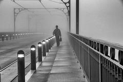 096.2016 (Francisco (PortoPortugal)) Tags: 0962016 20091011fol68032 ponteluizi bridgeluisi nevoeiro fog porto portugal pb bw portografiaassociaçãofotográficadoporto franciscoolivera noite night