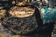 drained (Phredla) Tags: vsco summer nikon people d7200 wildlife drain water garbage net ocean humans sigma1835 art