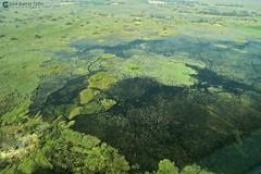 15-09-20 Ruta Okavango Botswana (113) R01 (Nikobo3) Tags: travel parque paisajes naturaleza color canon ngc delta unesco viajes botswana okavango vuelo twop frica vidasalvaje g7x omot deltadelokavango flickrtravelaward canong7x nikobo josgarcacobo todosloscomentarios