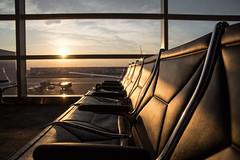 Detroit Airport (daniela beckmann) Tags: