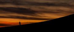 20150123-DSC_9066 (Raed Al-Ibrahim) Tags: sunset nikon flickr d800 autofocus flickraward flickraward5