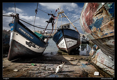 Amarradas (meggiecaminos) Tags: blue water azul port cat boats puerto agua barca barcos morocco porto gato marocco fishingboat acqua marruecos azzurro gatto atlanticocean asilah fishingport oceanoatlantico puertopesquero oceanoatlntico portodipesca