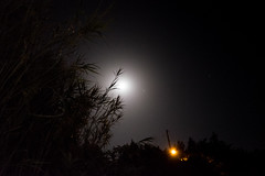 Every 70 years (Kostas Katsouris) Tags: street urban moon june night day fuji athens full greece longest naxos sunmer fujifim xt10 70yrs