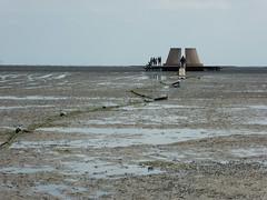 P1010327 (henriettej) Tags: nederland friesland oosterendterschelling
