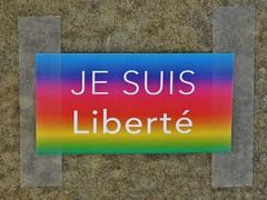 """12 - """"Je suis libert"""" (12/01/15) (AMToulouse) Tags: toulouse placeducapitole archivesmunicipales jesuischarlie 13novembre2015 tmoignagesattentats"""