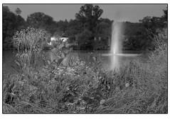 Bad Nauheim Groer Teich mit Nikon F5 AF-S 50mm 1,8 Blende 4 auf Kodak BW400CN (HP-Fotografie) Tags: germany hessen bad nauheim nikon f5 kodak bw400cn