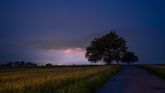 Thunder at night (jarnasen) Tags: road longexposure sky copyright tree nature field night clouds landscape denmark outdoor flash tripod wideangle dirtroad danmark thunder landskap falster xt1 nordiclandscape fujifilmxt1 xf1024mmf4 jarnasen jrnsen