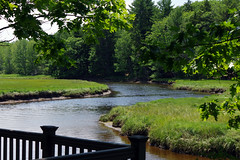 2016-07-17 Rachael Carson NWR (52) (Paul-W) Tags: vacation birds river march marine walk maine wells hike estuary trail saltmarsh saltpan 2016 rachelcarsonnationalwildliferefuge