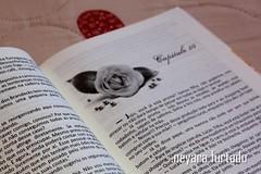 para sempre minha pequena 4 (NeyaRa Furtado) Tags: livro noiva casamento simone sempre pequena