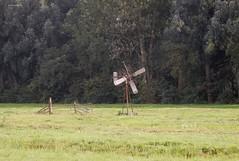 Bosmanmolen, Linschoten (bcbvisser13) Tags: weiland gras hek sloot landschap molen bosmanmolen bomen linschoten gemmontfoort provutrecht nederland eu