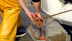 Sailor hands (patrick_milan) Tags: rope cordage aussire accastillage buoy boue flotteur hublot porthole bout taquet latch poulie pulley ra palan cloche bell hawser hands sailor fishing work pche travail marin