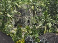 P9270100 (tonkonogov) Tags: indonesia bali ubud