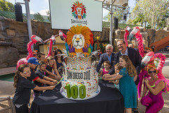 San Diego Zoo Turns 100 (San Diego Zoo Global) Tags: sandiegozooglobal2016 animals nature conservation sandiego travel centennial cake charmcity