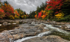 Swift River in Autumn (capers66) Tags: swiftriver river autumn fall canon5dmarkii kancamagus color newhampshire newengland water