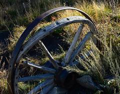 _DSC7990 (DianeBerky19) Tags: nikondf wy jacksonholewyoming wagonwheel