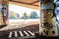 Paint Pallet (gothick_matt) Tags: uk england streetart bristol underpass graffiti unitedkingdom places pillars flyover